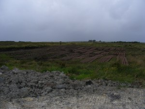 Stripping the bog for peat fuel